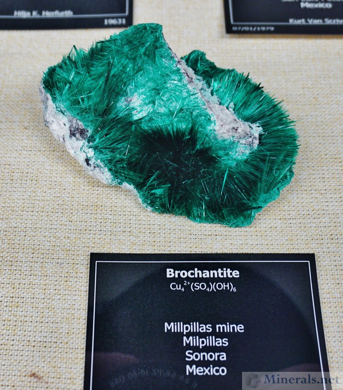 Brochantite from the Millpillas Mine, Sonora, Mexico