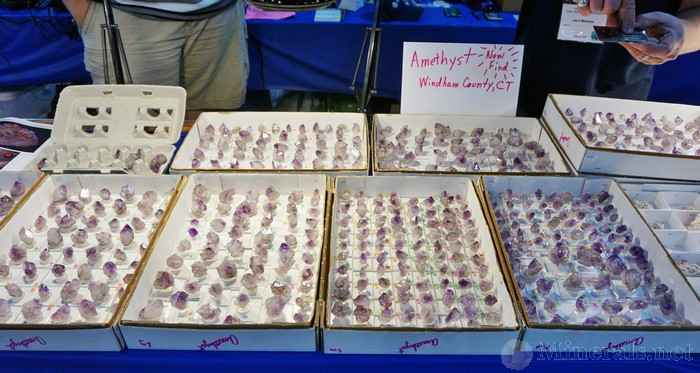 Several Flats of the the Amethyst at Jason's Booth