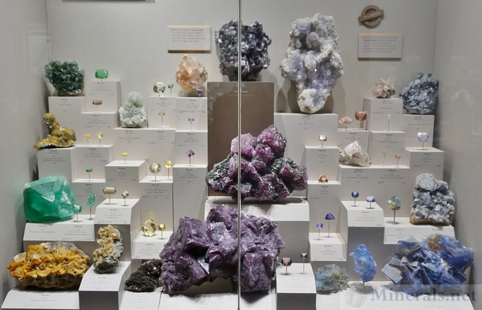 Fluorite Exhibit Case