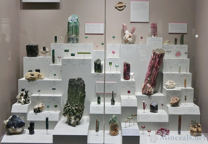 Tourmaline Exhibit Case