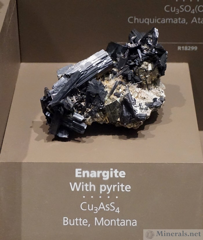 Enargite with Pyrite, Butte, Montana