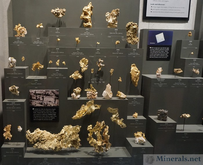 Exhibit Case of Gold