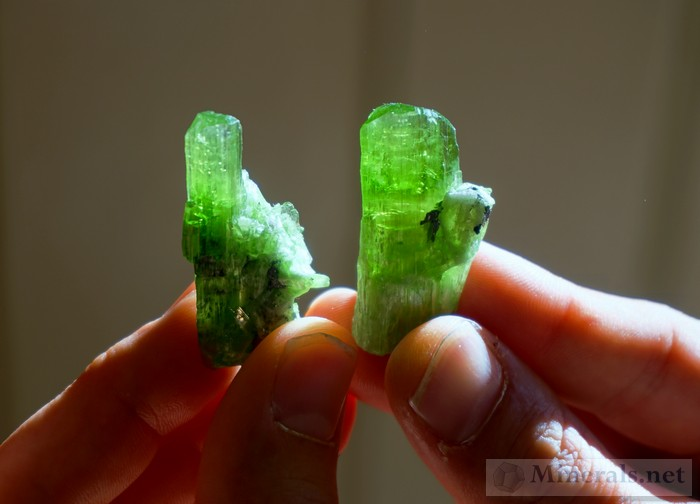 New Find of Electric Green, Transparent Chrome-Tremolite from Merelani, Tanzania