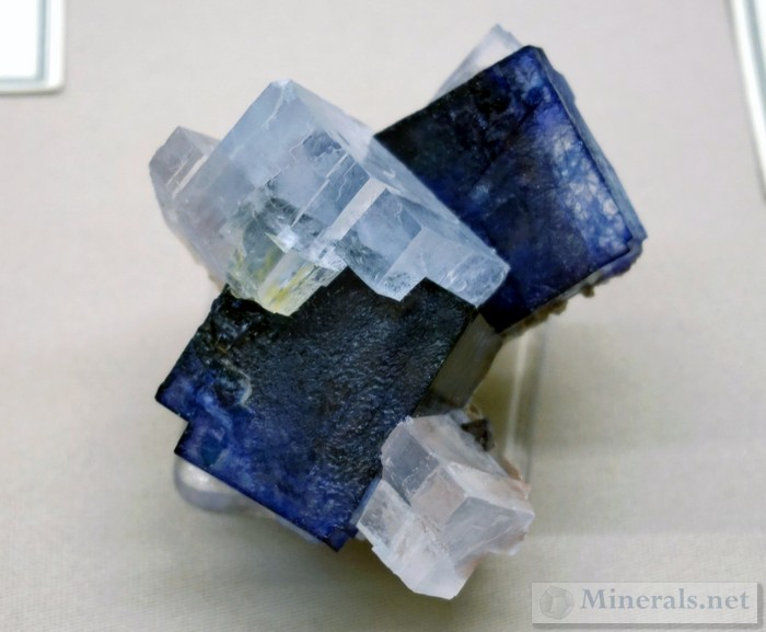 Blue Halite and White Sylvite from the Kerr McGee Mine, Carlsbad, Eddy Co., New Mexic