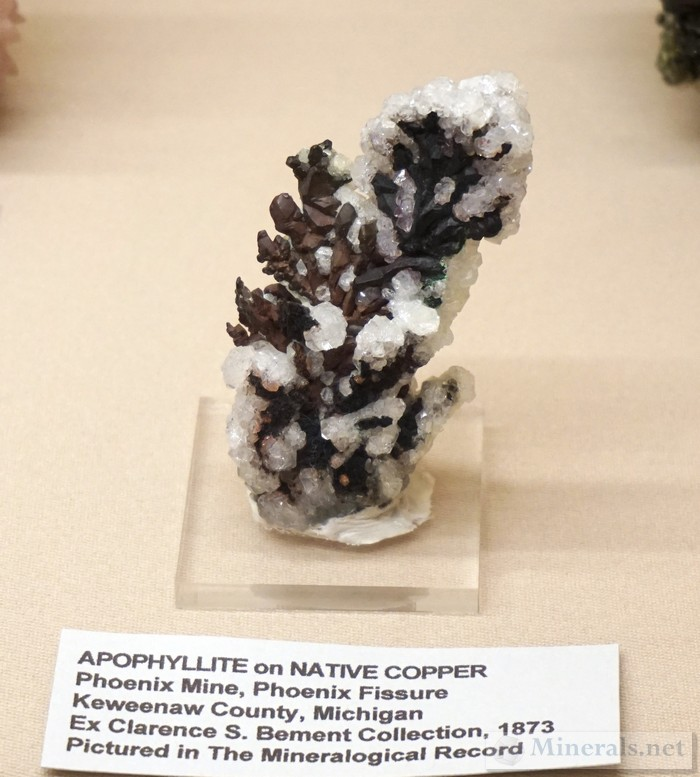 Apophyllite on Native Copper from the Phoenix Mine, Keweenaw Co., Michigan Paul E. Desautels Memorial Case