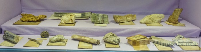 NY/NJ Edison Mineral Show Asbestos Minerals from Old Collections