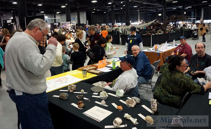 NY/NJ Edison Mineral Show Club Table of the North Jersey Mineralogical Society at the Show