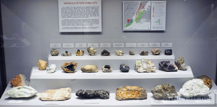 Minerals of New York City Case