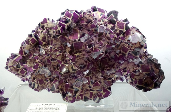 Fluorite from the Polish Prodigy Pocket, Okorusu Mine, Otjozondjupa, Namibia