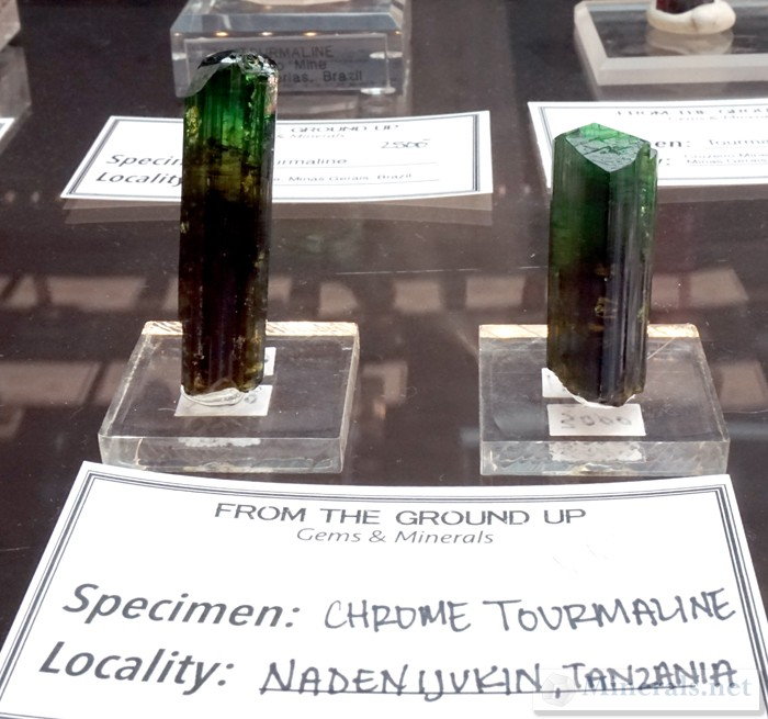 Gemmy Dravite Chrome Tourmaline from Nadenijukin, Tanzania