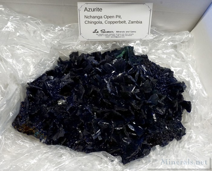 Large Crystallized Azurite Plate from Nchanga Open Pit, Chingola, Zambia