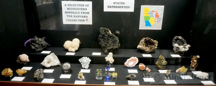 A Selection of Midwestern Minerals The Harvard Collection
