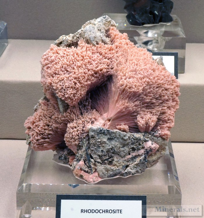 Upper Mississippi Valley Mineral Oddities Yale Peabody Museum