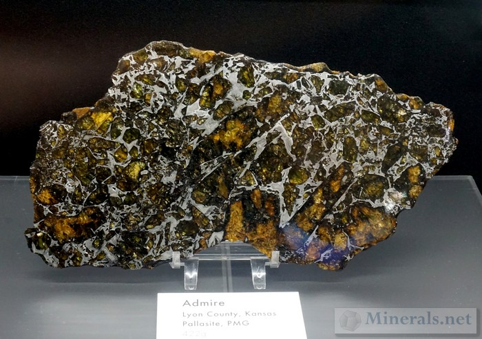 Palasite Meteorite Slab with Olivine from Lyon Co., KS Maine Mineral & Gem Museum