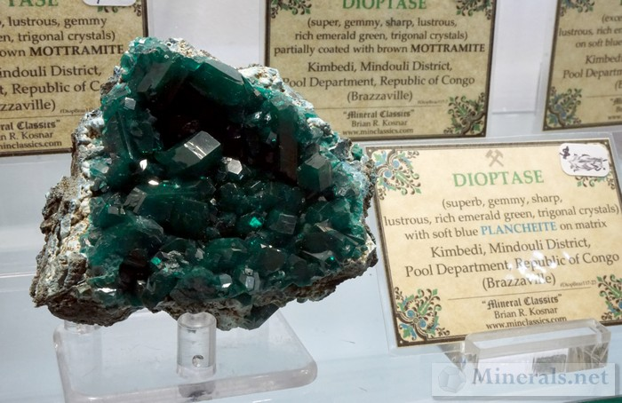 Dioptase with Plancheite Matrix from Kimbedi, Mindouli, Republic of Congo >Mineral Classics