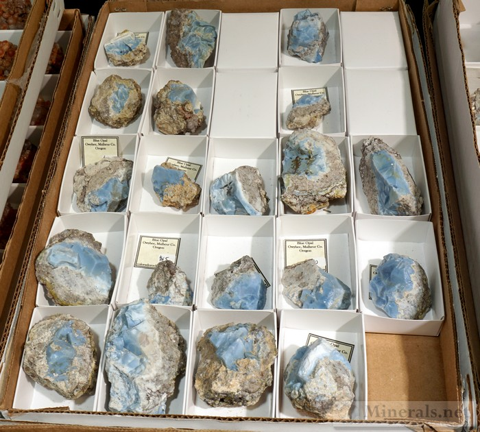 Blue Opal from Owyhee, Malheur Co., Oregon Colorado Rocks Amanda Adkins