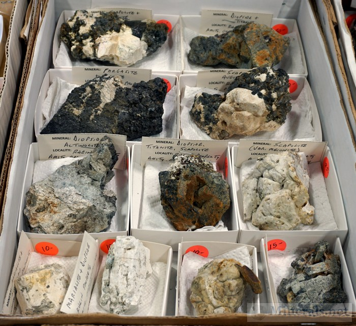 Minerals from the Rhein Find in Amity, NY, Acquired by Gary Maldovany Just Keep Rockin