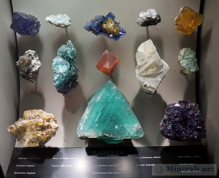 Display Case of Fluorite
