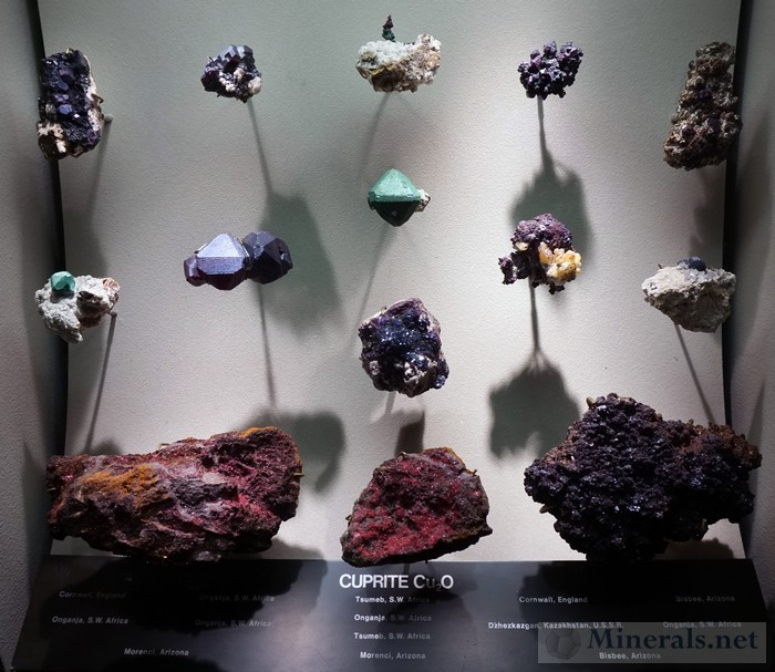 Display Case of Cuprite