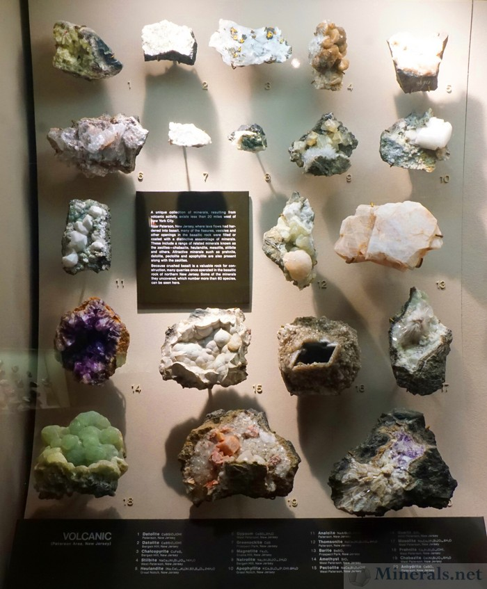 Main Case of Volcanic Minerals from the Paterson Area, New Jersey