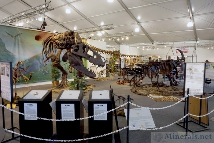 Exceptional Dinosaur Fossil Exhibit and Rocks from the Moon, Mars, and Vesta