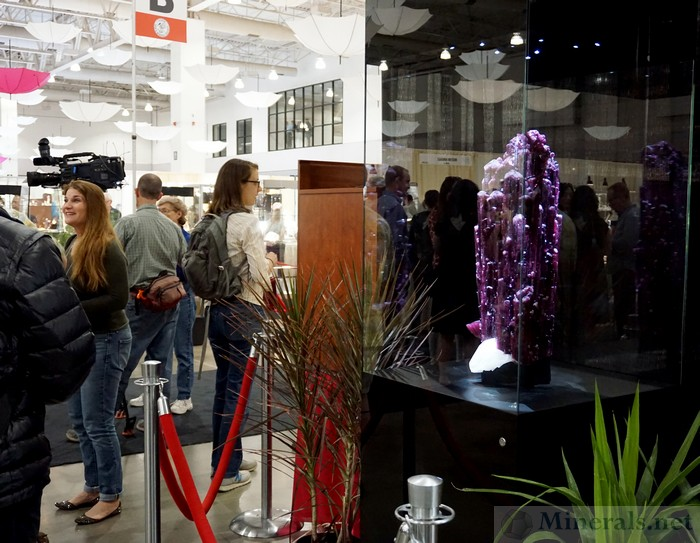 The Giant Gem Tourmaline Crystal from Brazil as the Main Showpiece of the Exhibits