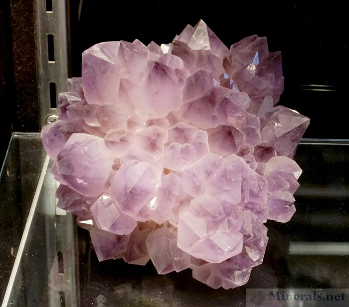 Large Amethyst Cluster from the Reel Mine, Iron Station, NC, James Hall