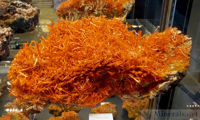 New Crocoite from this Year's Mining Activity from the Adelaide Mine, Dundas, Tasmania, Australia, The Adelaide Mining Company