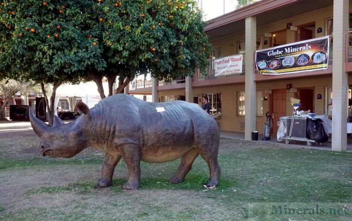 Rhinoceros Replica and Oranges Trees in the HTCC Courtyard