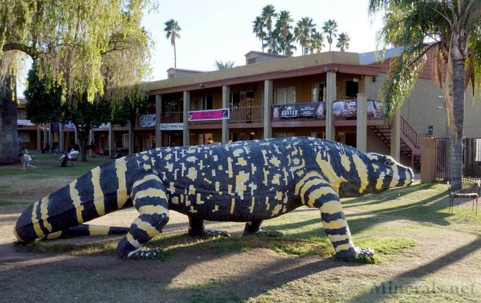 Gila Monster Replica in the HTCC Courtyard