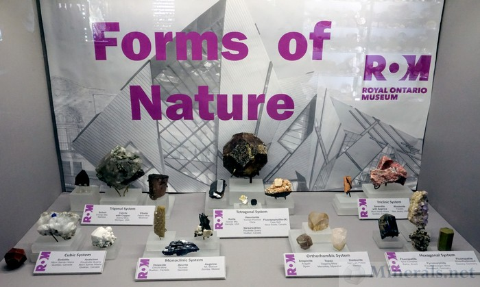 Forms of Nature Royal Ontario Museum