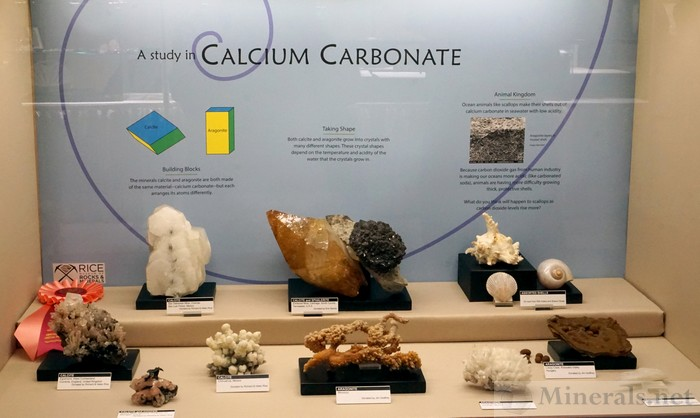 A Study in Calcium Carbonate Rice Museum of Rocks & Minerals