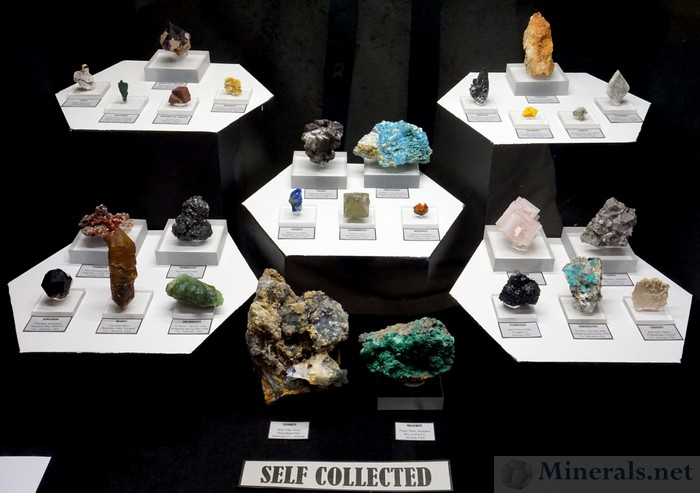 Various Self-Collected Minerals