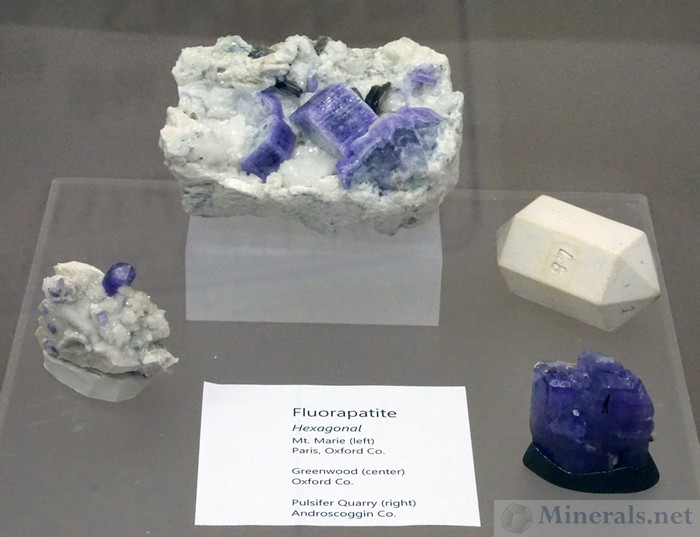 Purple Apatite from Mt. Marie (L), Greenwood (C), and the Pulsifier Quarry (R), Maine, Maine Mineral & Gem Museum
