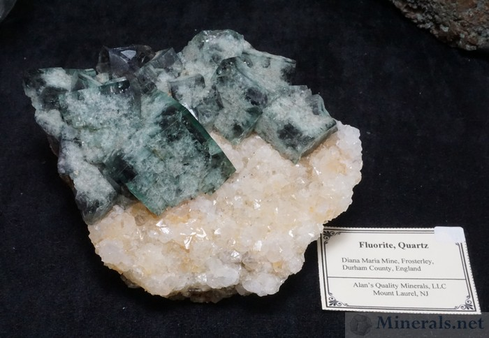 Fluorite on Quartz from the Diana Maria Mine, Frosterley, England, Alan's Quality Minerals