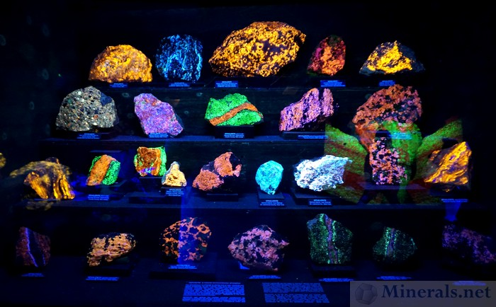One of the Additional Fluorescent Displays, in the Geotec Center