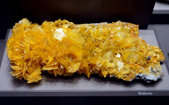 Large Wulfenite Crystal Plate with Mimetite from the San Francisco Mine, Sonora, Mexico