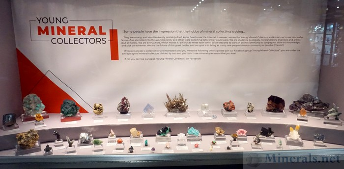 Young Mineral Collectors Case