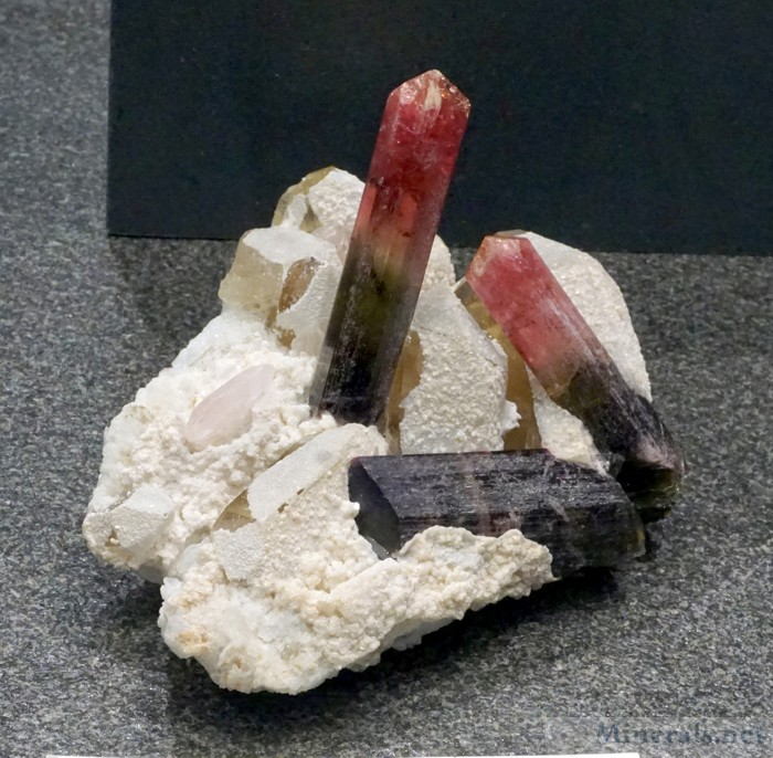 Liddicoatite Tourmaline with Morganite from Ampatsikharita, Sahatany Valley, Madagascar