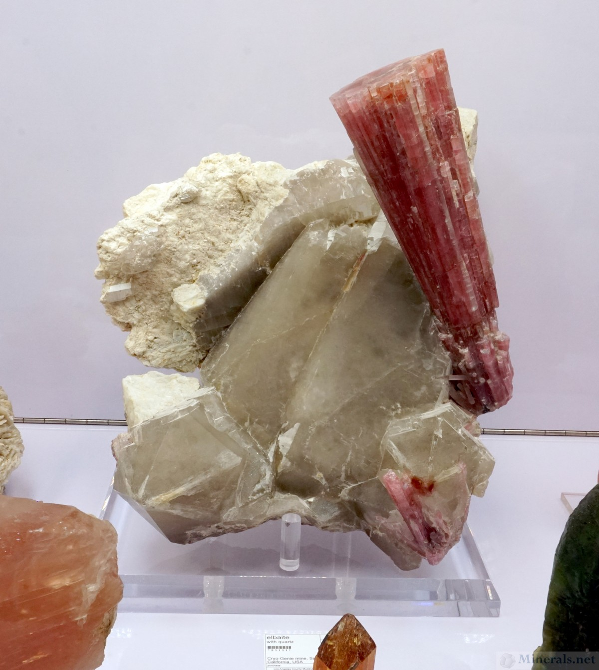 Tourmaline Spray on Quartz from the Cryo-Genie Mine, Warner Springs, San Diego Co., CA, Natural History Museum, Los Angeles County