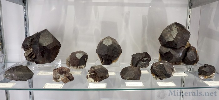 Large Black Almandine Garnet Crystals from the Mount Marie Mine, Paris, Maine, Graeber & Himes