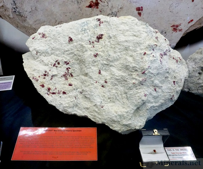 Worlds Largest Red Beryl Specimen, weighing over 45 lbs with 50+ Red Beryl Crystals, from the Wah Wah Mountains, Utah. Obtained from mine owner Earl Foster's personal collection in 2005.