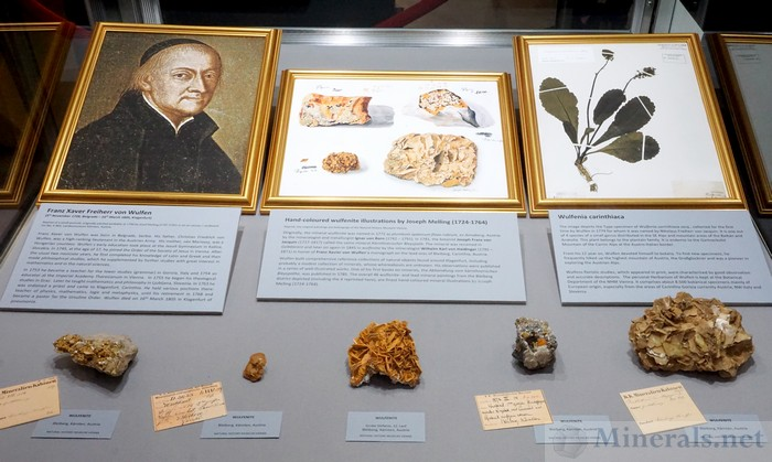 Tribute to Franz Xaver Freiherr von Wulfen, Whom Wulfenite is Named After, Natural History Museum Vienna