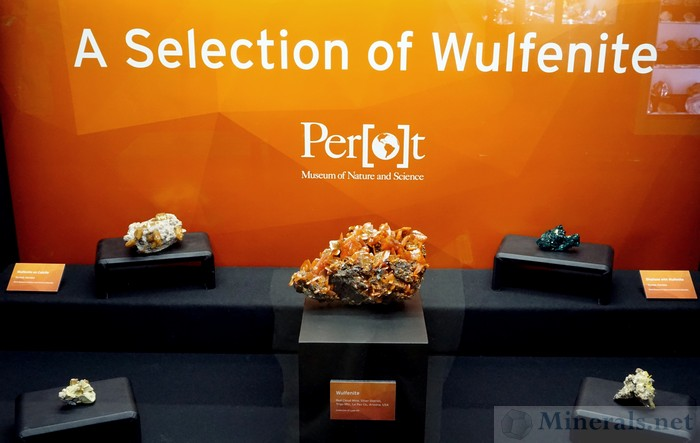 A Selection of Wulfenite, Perot Museum of Nature and Science
