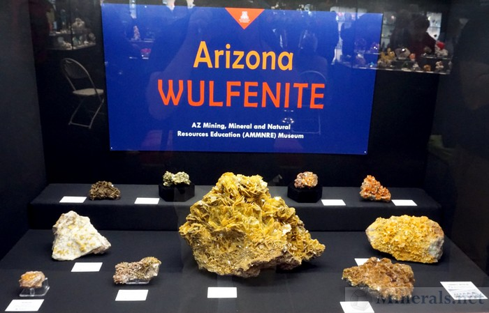 Arizona Wulfenite AZ Mining, Mineral, and Natural Resources (AMMNRE) Museum