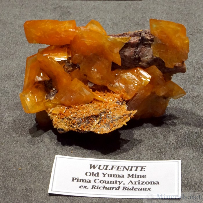 Wulfenite from the Old Yuma Mine, Pima Co., Arizona, Collection of Wayne and Dona Leicht