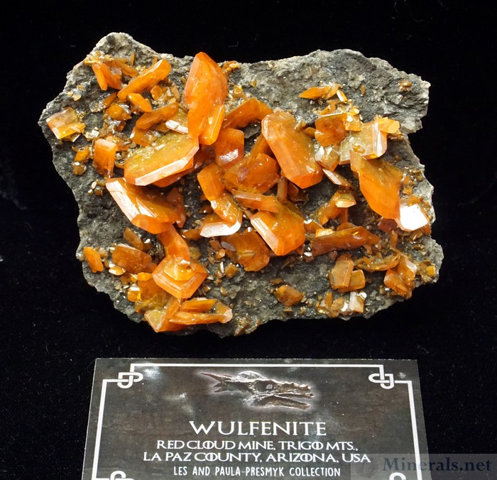 Wulfenite from the Red Cloud Mine, Trigo Mountains, La Paz Co, Arizona, Les & Paula Presmyk Collection