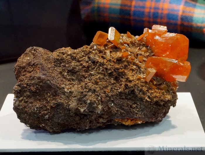 Wulfenite from the Red Cloud Mine, La Paz Co., Arizona, Carnegie Mineralogical Award