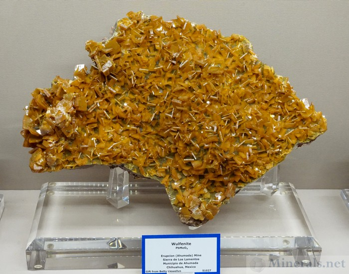 Wulfenite from the Erupcion (Ahumada) Mine, Sierra de los Lamentos, Chihuahua, Mexico, Colorado School of Mines