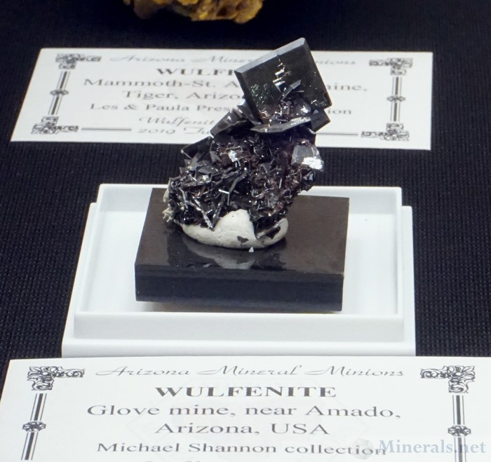 Very Rare Black Crystals from the Glove Mine, near Amado, Santa Cruz Co., AZ, Arizona Mineral Minions Case, Michael Shannon Collection